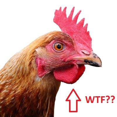 chicken_PNG2159