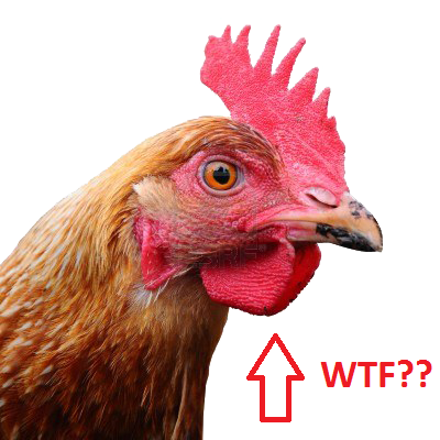 chicken_PNG2159